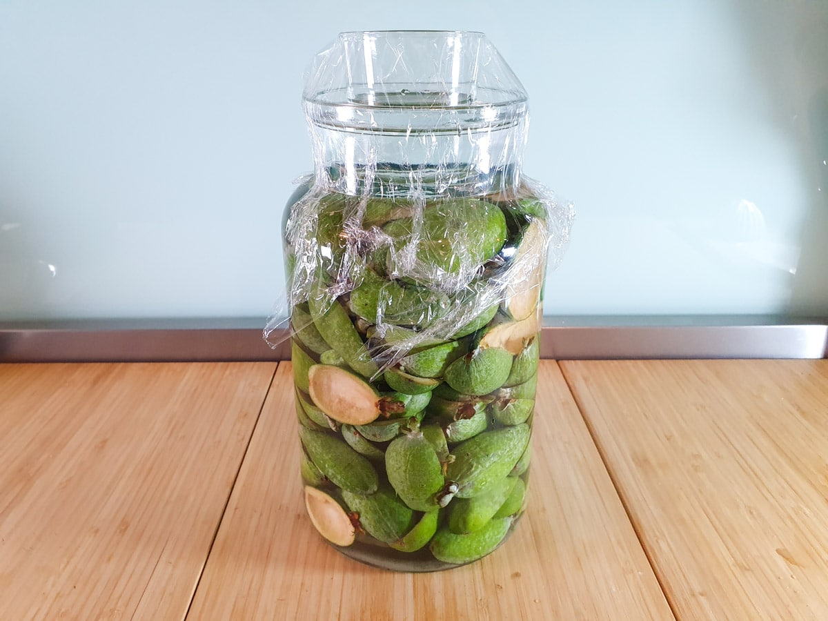 Jar with feijoa skins weighed down by glass and covered with cling film.