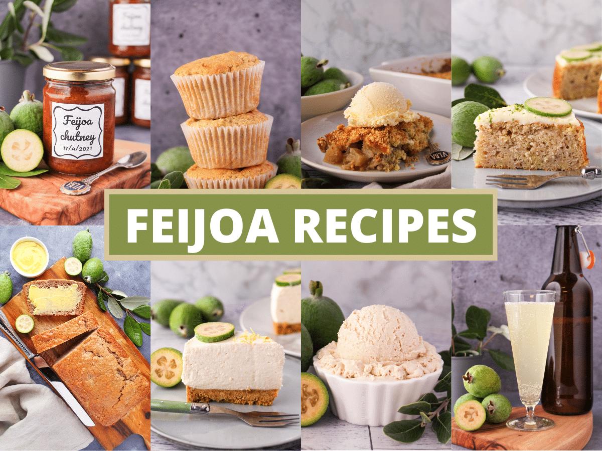 Collage of pictures of feijoa recipes, feijoa chutney, feijoa muffins, feijoa crumble, feijoa cake, feijoa loaf, feijoa cheesecake, feijoa ice cream and feijoa fizz, with text overlay, feijoa recipes.