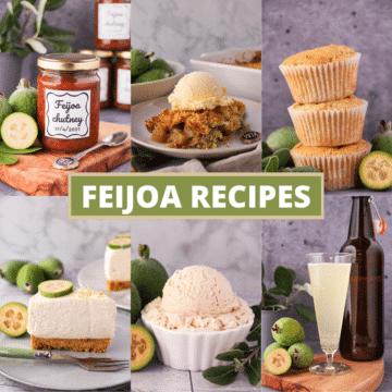 Collage of pictures of feijoa recipes, feijoa chutney, feijoa muffins, feijoa crumble, feijoa cheesecake, feijoa ice cream and feijoa fizz, with text overlay, feijoa recipes.
